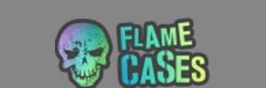 FLAMECASES.COM