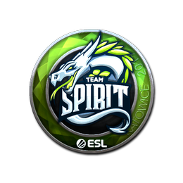 Наклейка   Team Spirit (металлическая)   Катовице 2019
